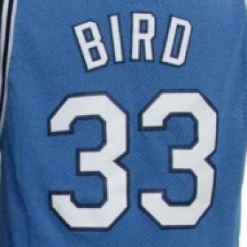 33Bird