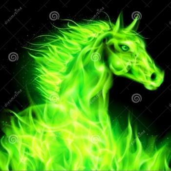 Cavaliere Verde Smeraldo
