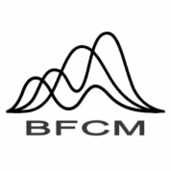 BFCMinvest Com