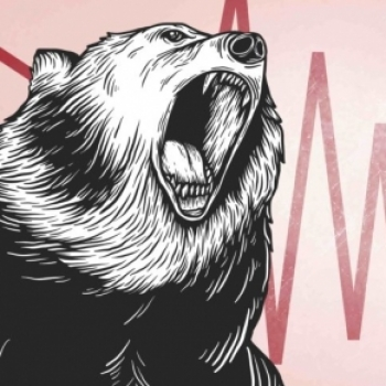 The roaring Bear