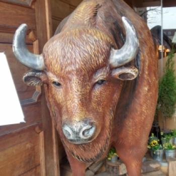 bull artur