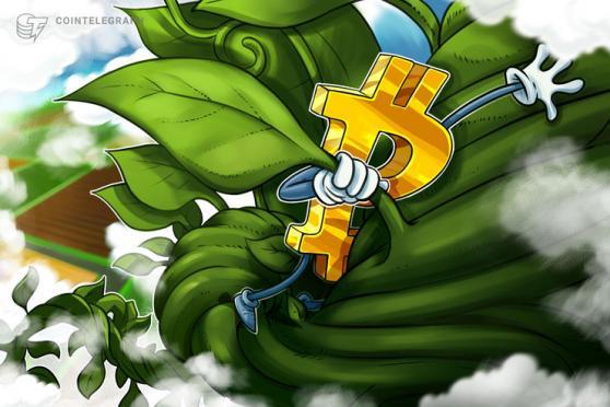società bitcoin nel mercato azionario